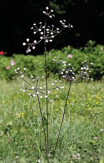 """Gartenstecker-Blumenset """"Weiße Blüten"""", 3-teilig"""
