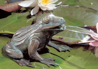 """""""Wasserspeier-Frosch"""", Bronze"""